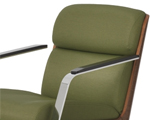 Special Option upholstery
